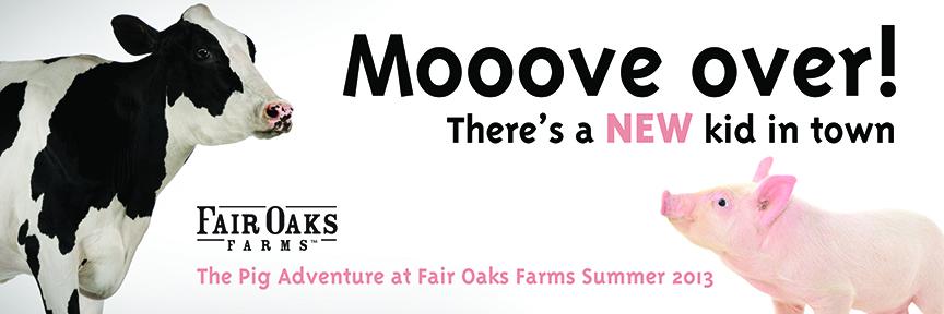 Grand Opening Fair Oaks Farm Pig Adventure