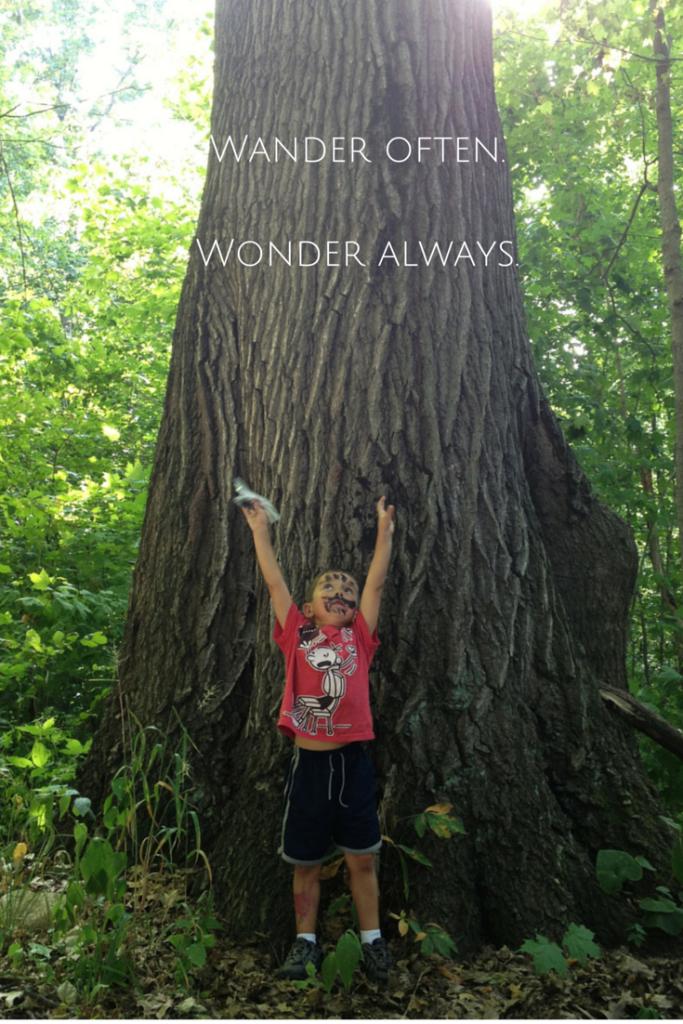 Wander often. Wonder always. Quote